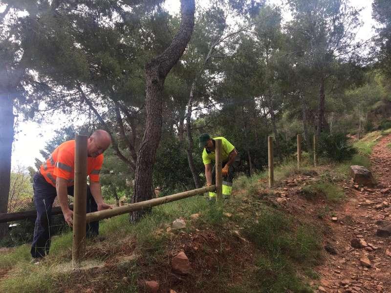 Treballs forestals a Faura.