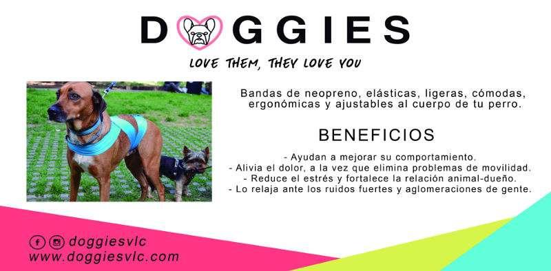Información sobre el sistema Doggies. EPDA