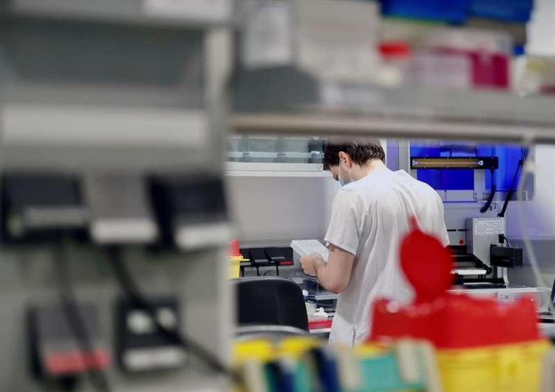 Un técnico sanitario trabaja en la cabina de seguridad de un laboratorio de virología. EFE