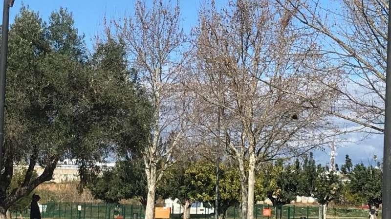 Zona de esparcimiento canino en Paterna. EPDA