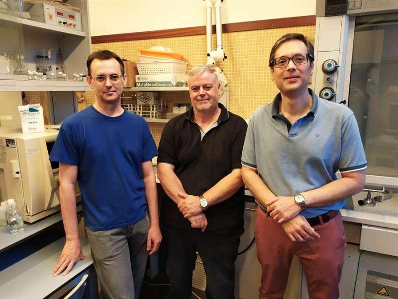De izquierda a derecha, Javier Fernández, Francisco Cases y José Antonio Bonastre, del Grupo de electrocatálisis, síntesis electroquímica y caracterización de polímeros (GESEP) del campus de Alcoi de la UPV, en una imagen facilitada por la universidad.
