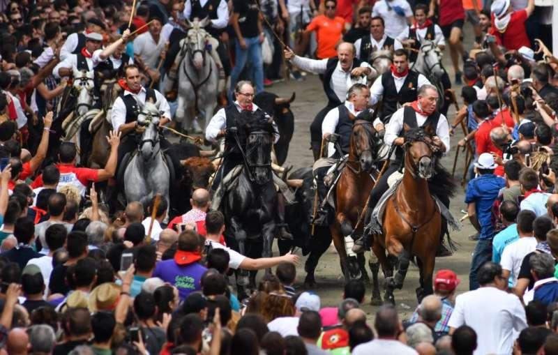 Entrada de toros y caballos de Segorbe