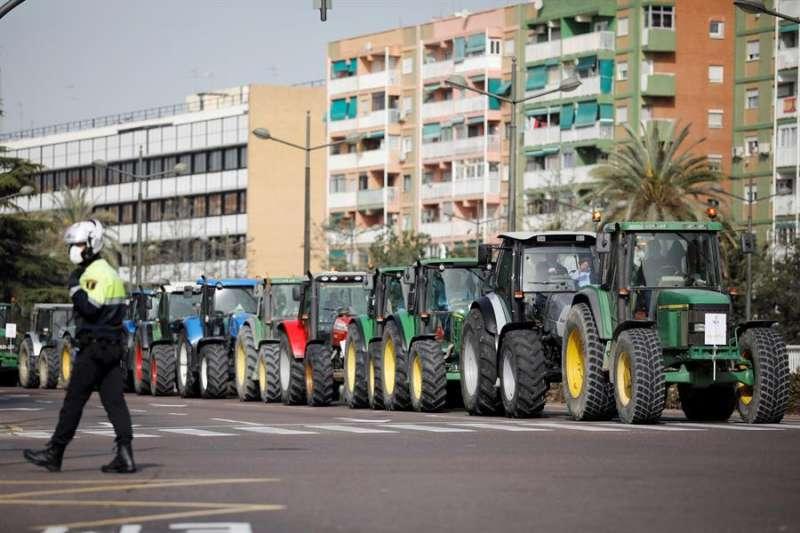 AVA-Asaja y La Unió de Llauradors reúnen cientos de tractores en València en defensa del sector arrocero