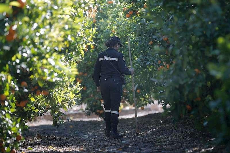 Labores de búsqueda del cuerpo de la joven Marta Calvo en el municipio valenciano de Manuel y en los alrededores. EFE