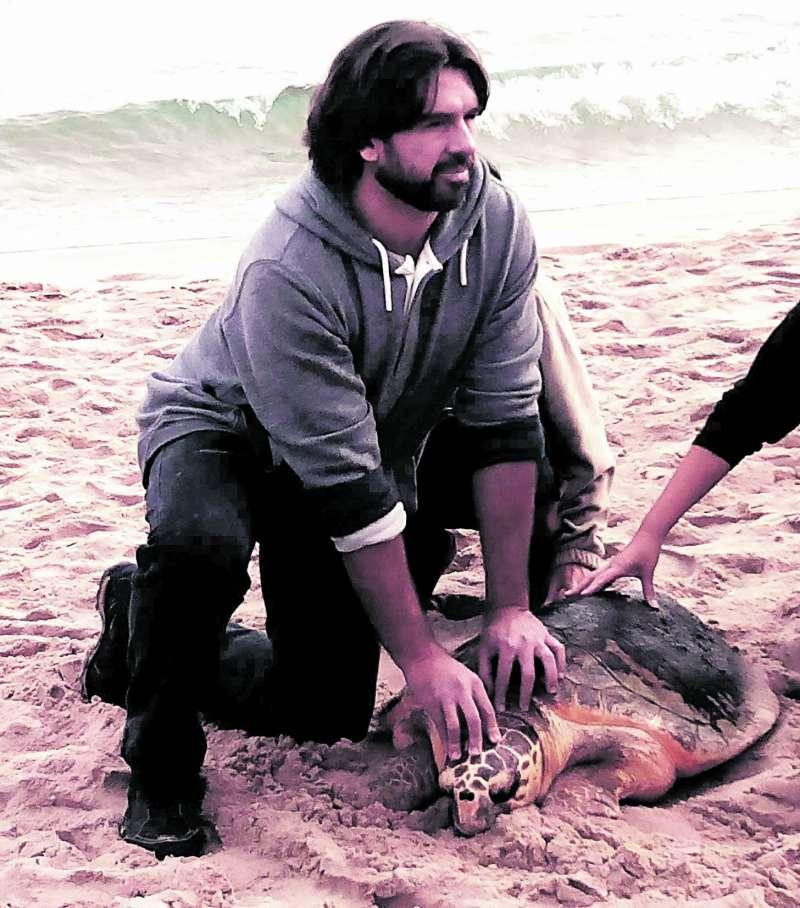 Hay que llamar al 112 si vemos una tortuga en la playa.