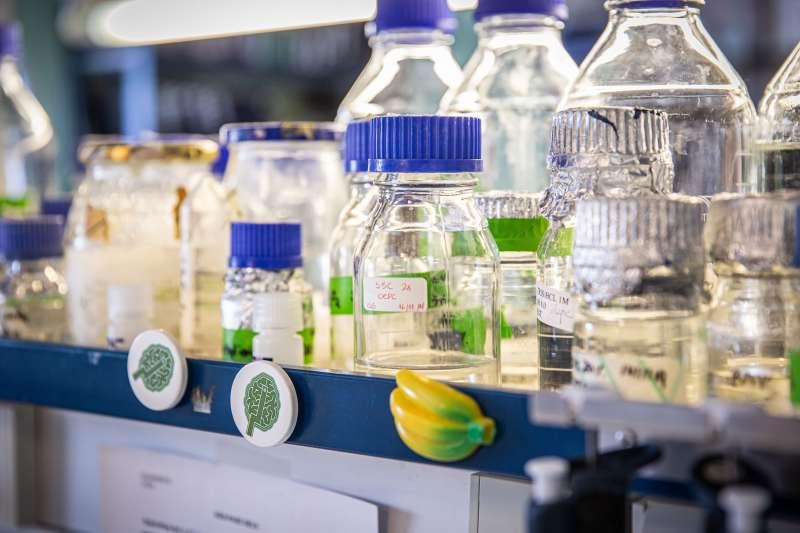 Laboratorio de coronavirus del CNB-CSIC. / Agencia SINC