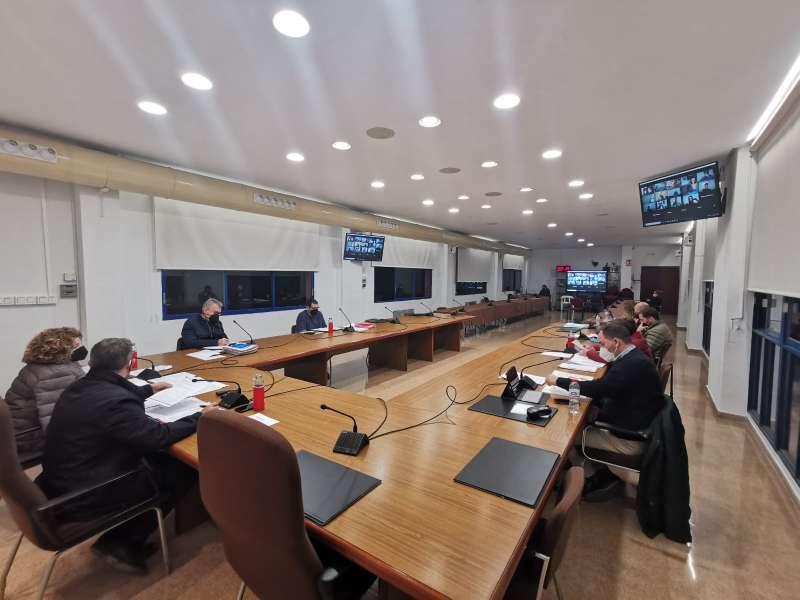 Asistentes al pleno, con otros concejales con conexión virtual. EPDA