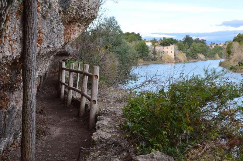 Senda botànica del paisatge protegit de la Desembocadura del riu Millars/EPDA