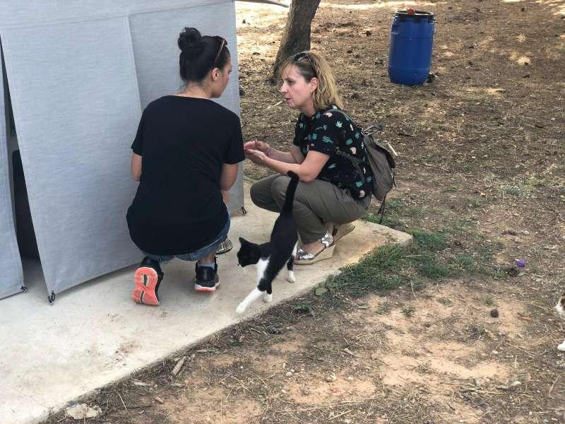 Merche Navarro visitando la colonia felina de Táctica. epda