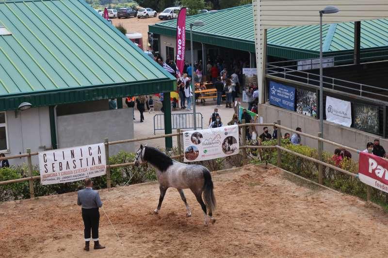 Han participado dos caballos de Segorbe y uno de Altura