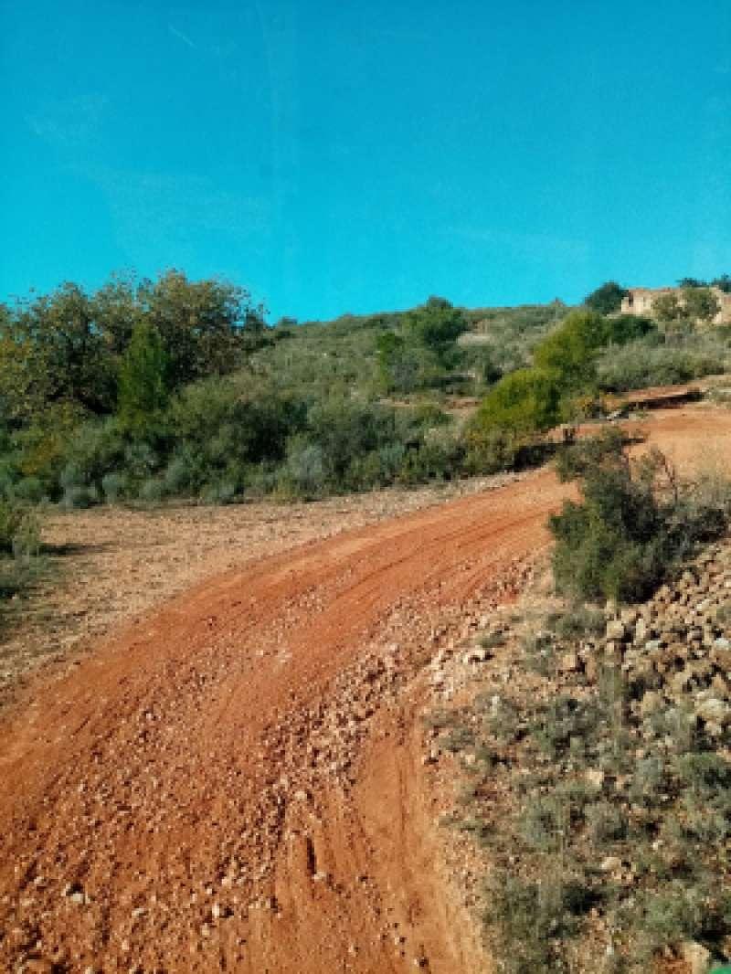 Detalle de los arreglos acometidos en uno de los caminos. / EPDA