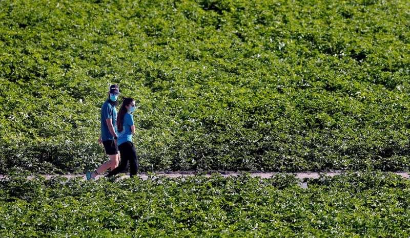 Dos personas pasean con mascarilla. EFE