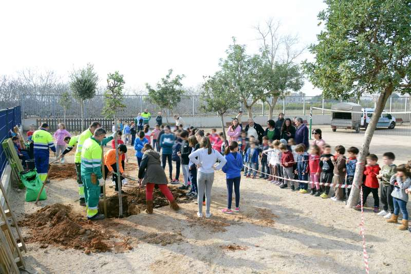 Els escolars plantant un arbre. EPDA