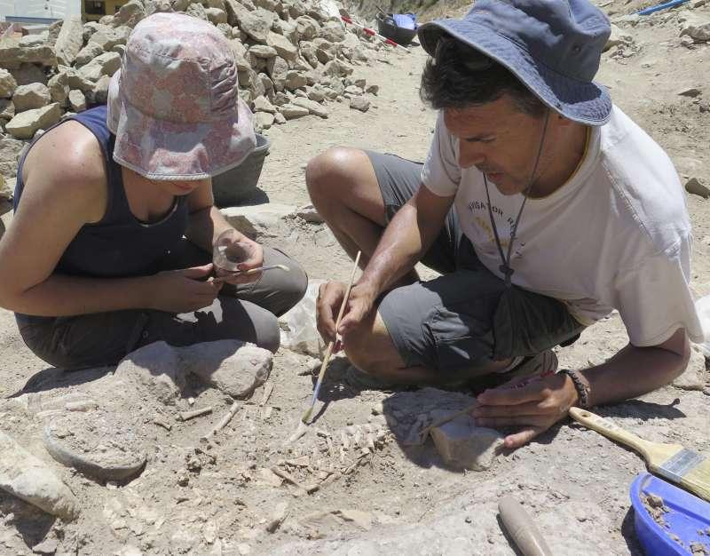 Excavación/EPDA