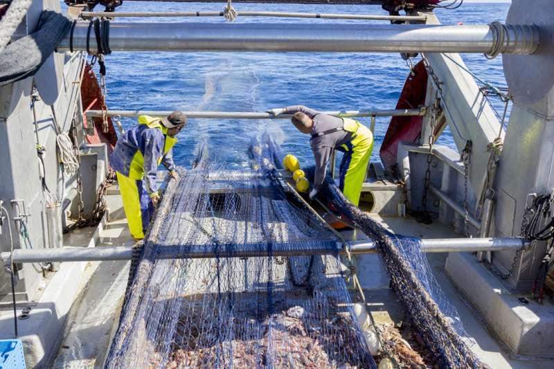 RepescaPlas: resultados de las primeras caracterizaciones de residuos retirados en los puertos de Gandia y Galicia