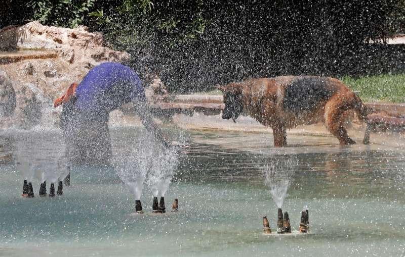 Una joven con su perro se refrescan en una fuente de los Jardines de Viveros de Valencia.