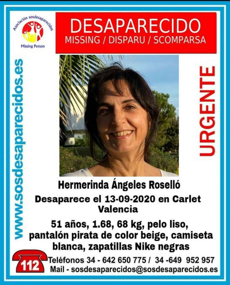 Cartel en el que se anuncia la desaparición de Meri. EPDA