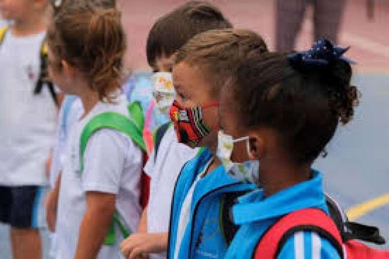 Brote en un colegio de Elda/EPDA