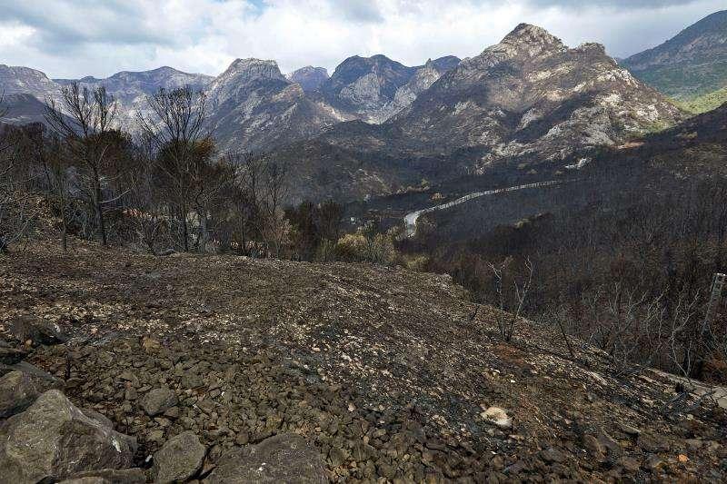 Vista de las montañas que rodean la carretera CV-675, que une las localidades valencianas de Gandia y Barx, devastadas por el incendio forestal de Llutxent de 2018. EFE/Archivo