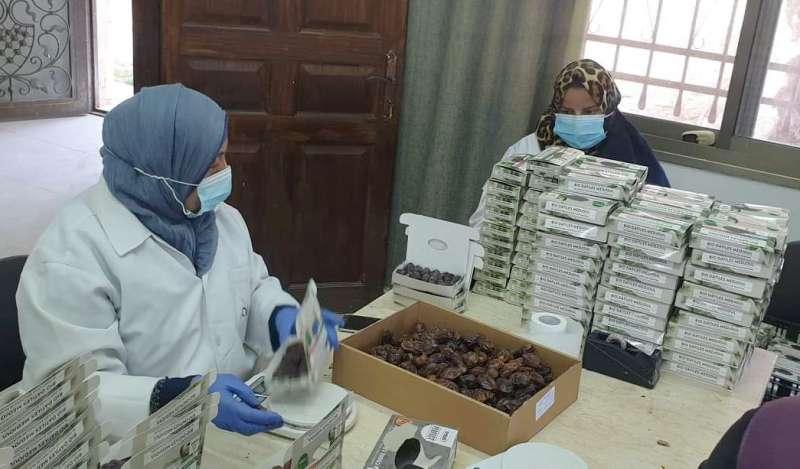 Envasado de dátiles, Palestina. / EPDA