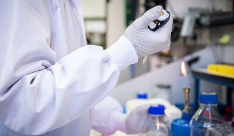 Investigación para la vacuna de la covid-19./ EPDA