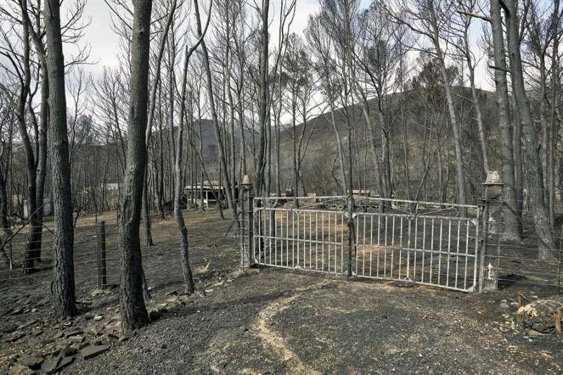Imagen de los daños causados en una vivienda por un incendio forestal en Llutxent. EFE