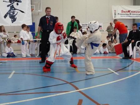 Más de 30 árbitros y 300 jóvenes karatekas de entre 3 y 16 años han participado en esta competición interna que sirve como preparación para el campeonato nacional. Foto: EPDA.