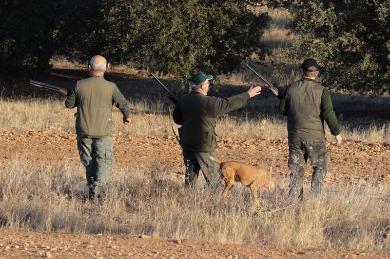Imagen de archivo de un coto de caza. EFE/Archivo