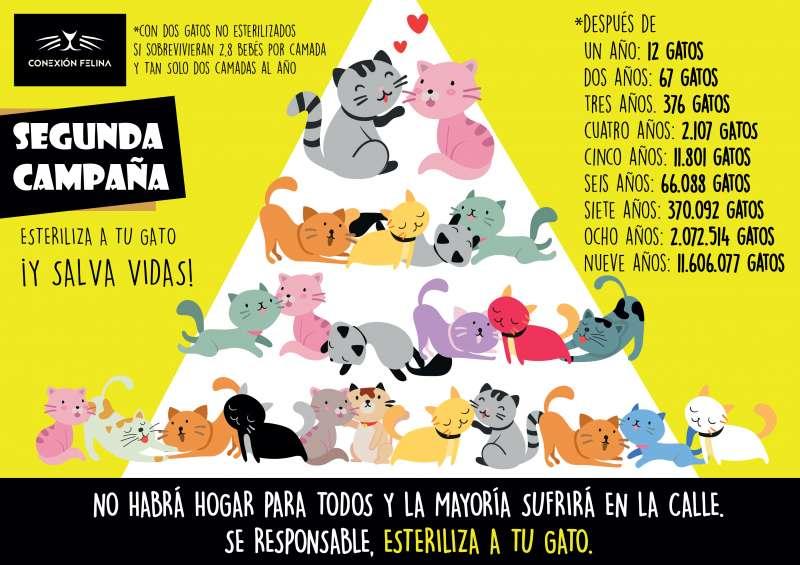 Campaña de Quart. EPDA