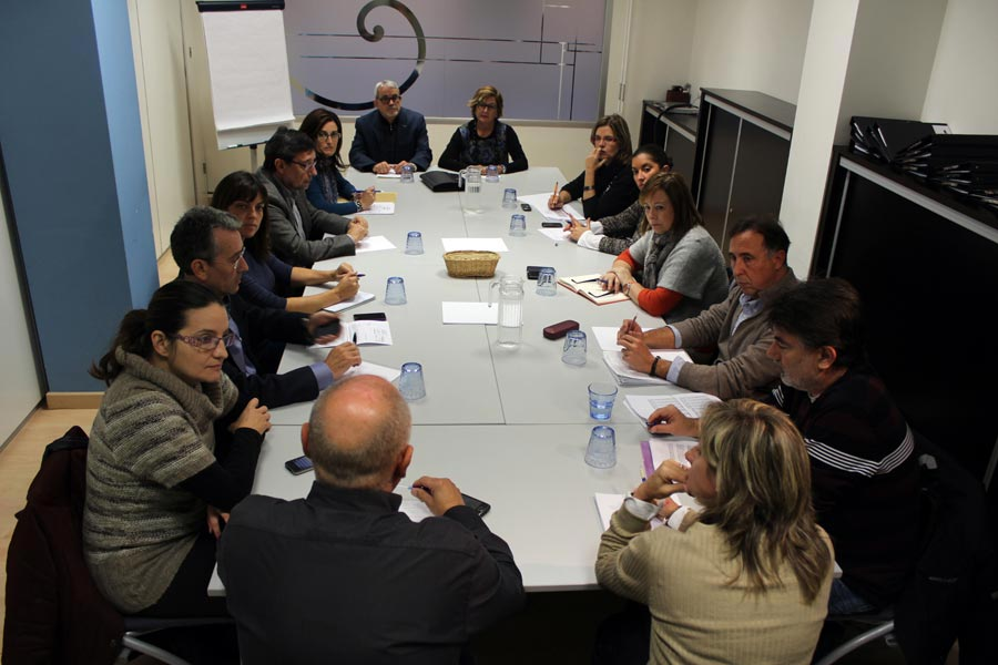 La Mesa por la Discapacidad. FOTO EPDA