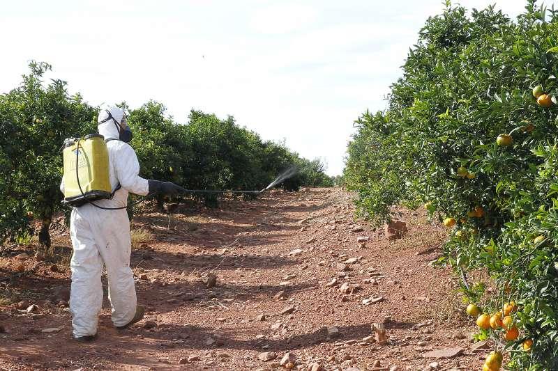 Un agricultor pulveriza un campo