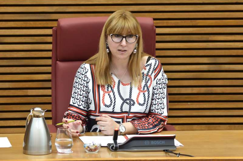 Representante de la FSCM durante su participación en les Corts Valencianes. EPDA