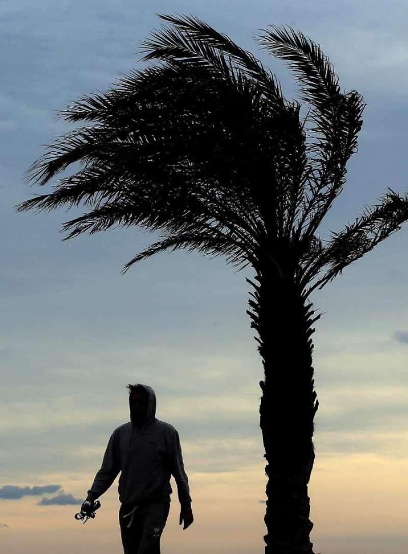 El viento ha alcanzado este miércoles rachas de hasta 80 kilómetros por hora en la Comunitat. EFE/Archivo