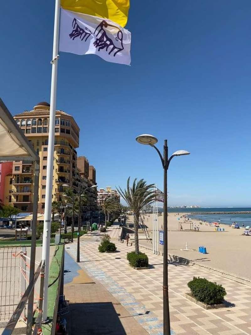 Bandera amarilla en la playa
