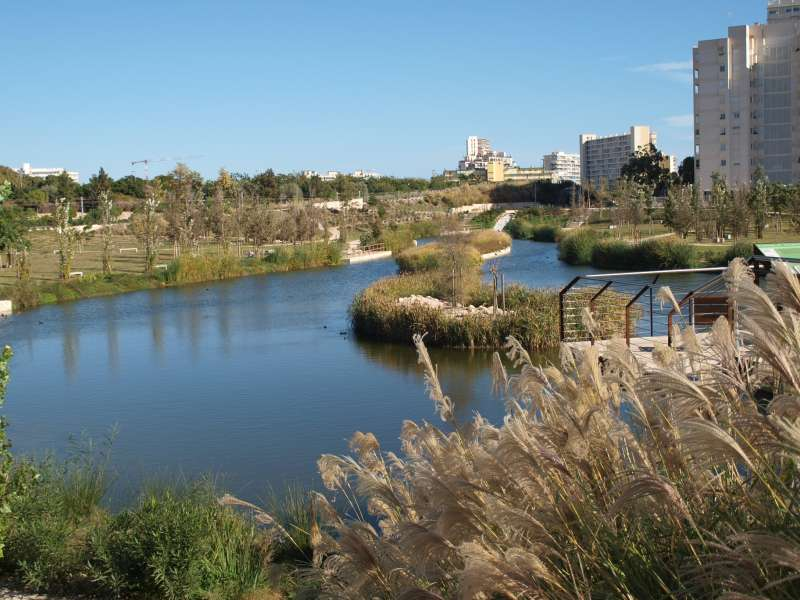 Parque La Marjal (Alicante).