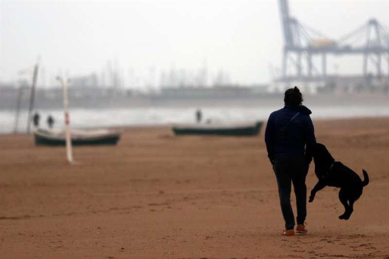 Imagen de archivo de una persona paseando con un perro. EFE