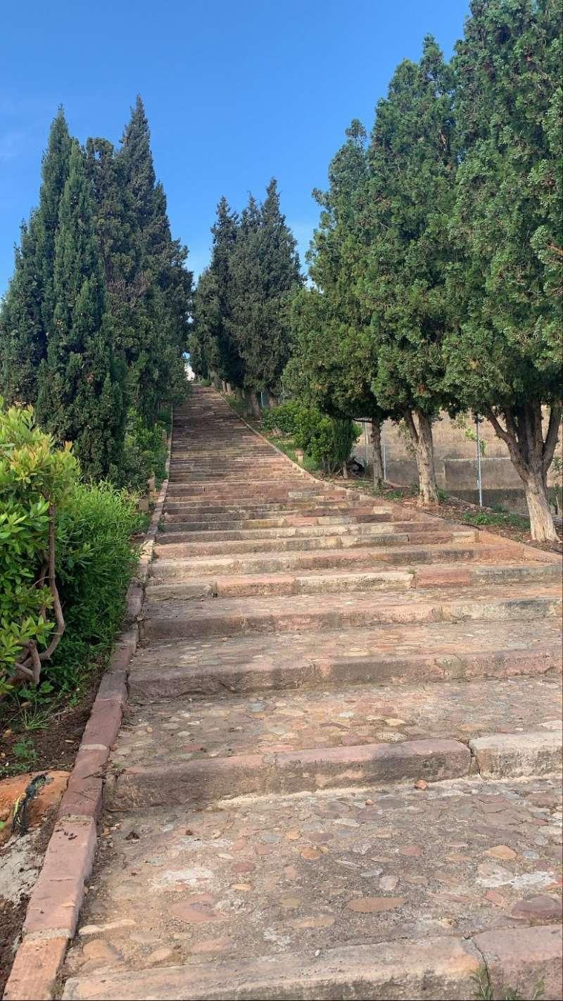 Uno de los senderos actuales de Benifairó de les Valls. / EPDA
