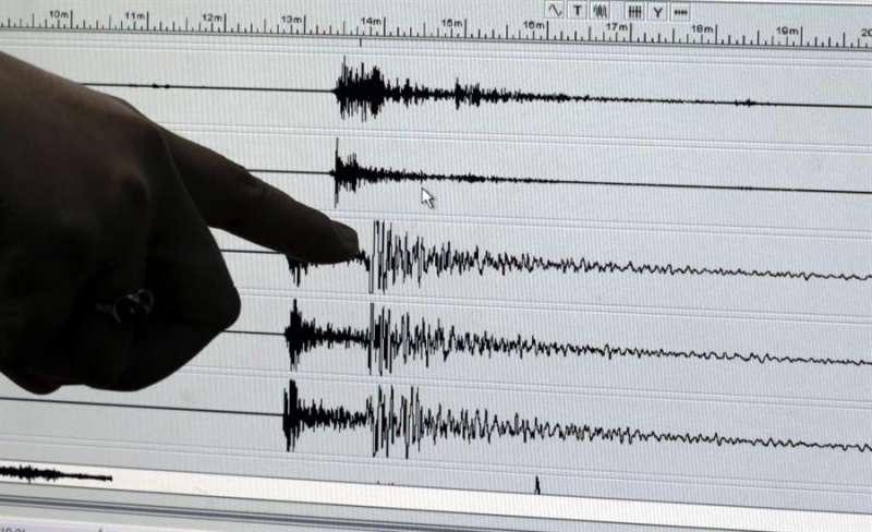 Imagen de archivo de un gráfico de actividad sismica. EFE/Archivo